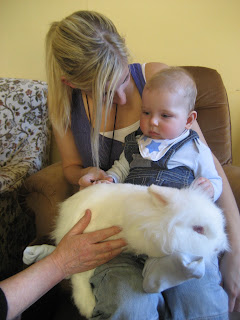 baby and rabbit, mini zoo