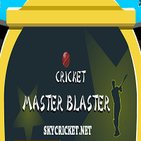 Play Cricket Master Game