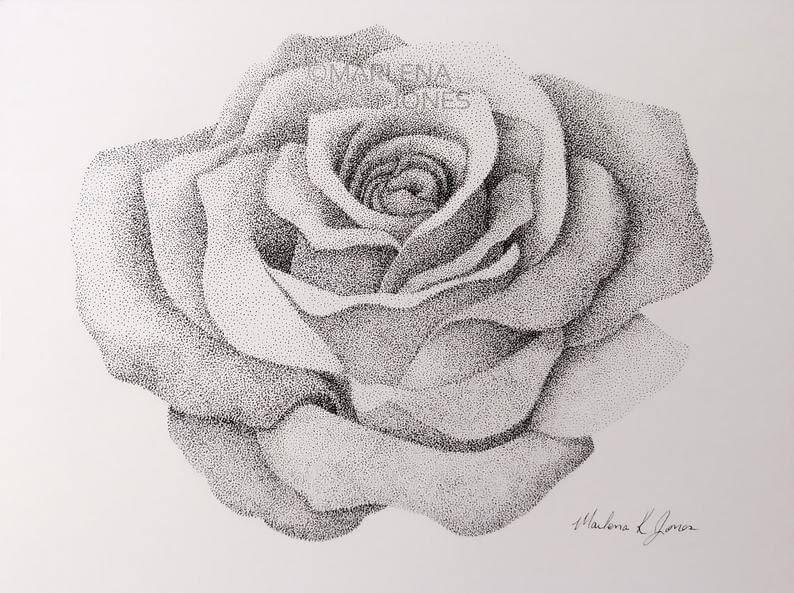 01-Rose-1-Marlena-Jones-www-designstack-co