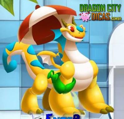 Dragão Praia - Informações