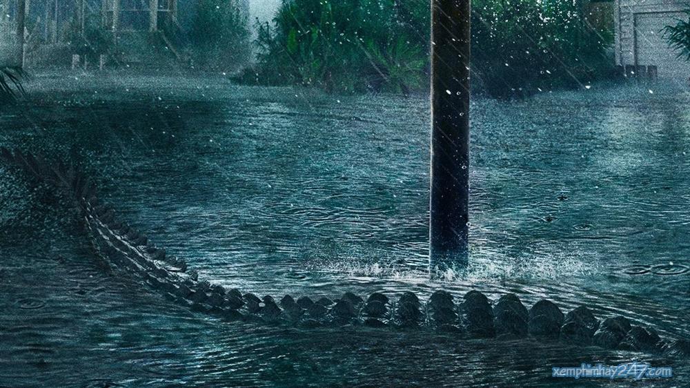 http://xemphimhay247.com - Xem phim hay 247 - Địa Đạo Cá Sấu Tử Thần (2019) - Crawl (2019)