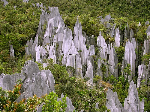 The Pinnacles Mulu
