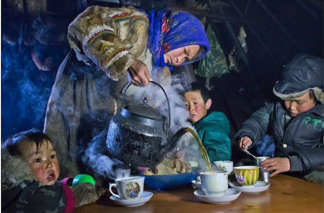 موعد الشاي في شبه جزيرة يامال !