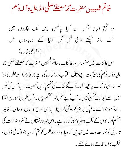 Seerat un nabi in urdu essay - Homework Example