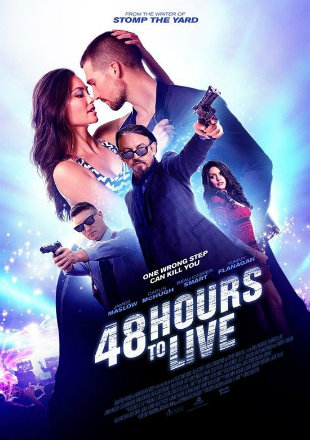 Poster of 48 Hours to Live (2016) Full Movie HDRip 720p 800Mb ESub