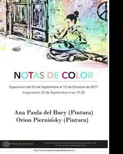 Notas de Color