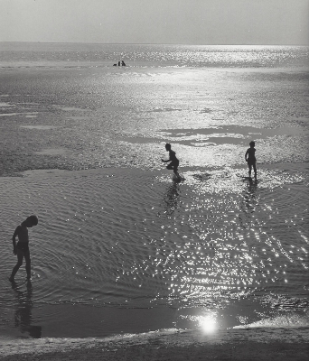 http://yama-bato.tumblr.com/post/163782605671/marckald-kees-scherer-boys-on-the-beach