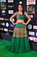 Nandita Swetha in a tight Green Choli Ghagra at IIFA Utsavam Awards March 2017 ~ 038.JPG