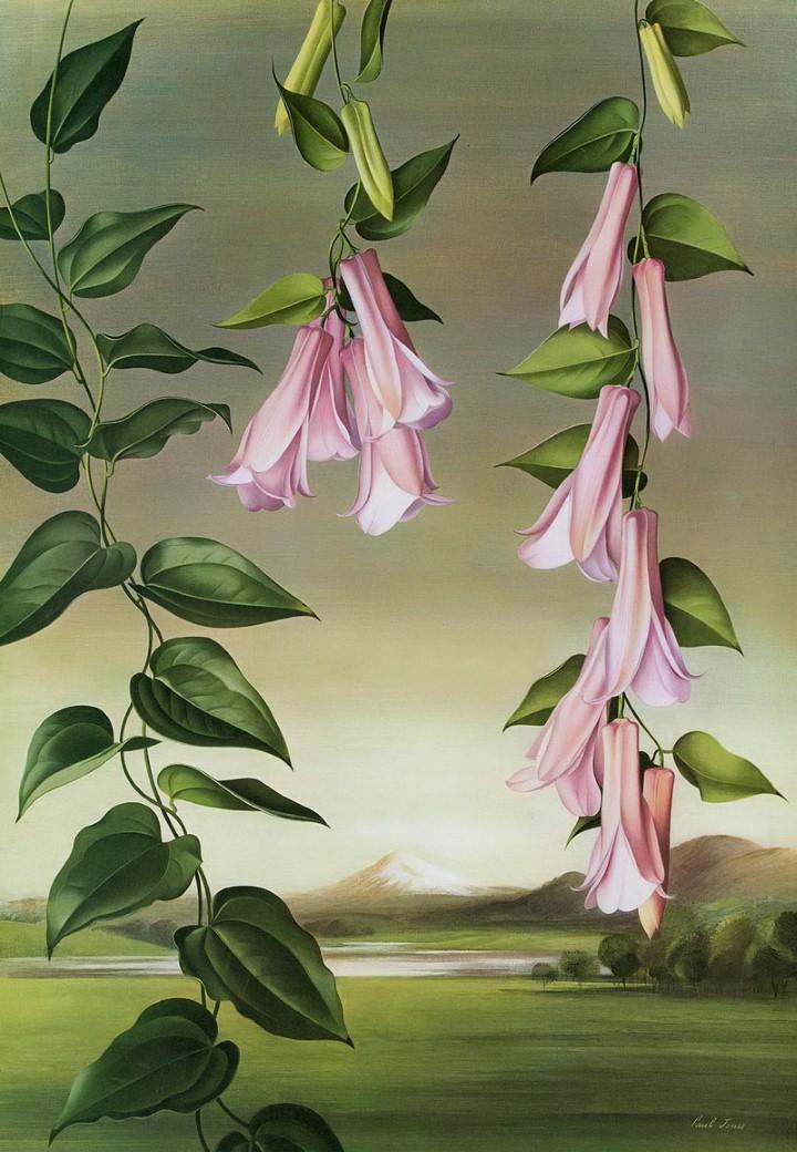 Paul Jones. Акварельные рисунки цветов 3