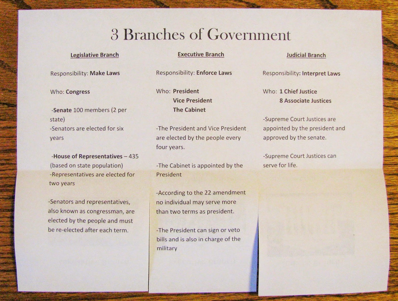 Learning Is The Game 3 Branches Of Government Study Guide