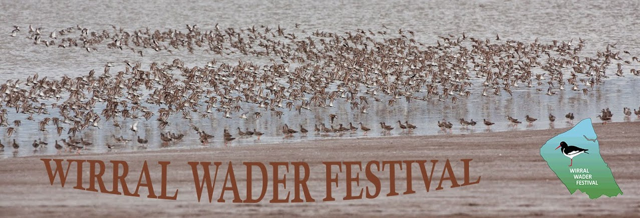 Wirral Wader Festival