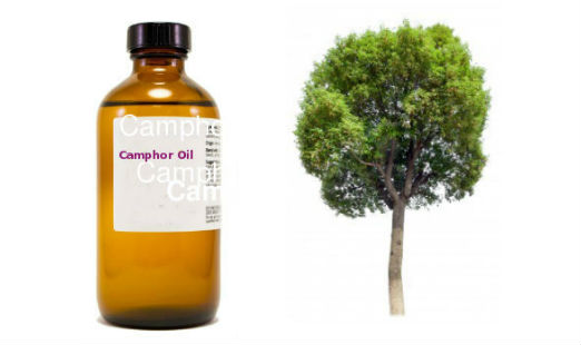 Camphor Oil Uses