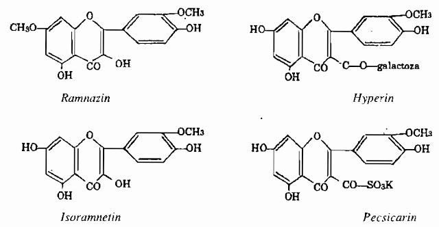 Công thức hóa học Cây Nghể - Polygonum hydropiper - CẦM MÁU