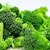 Makanan Sehat | Ini Dia Manfaat Istimewa Mengkonsumsi Sayur Brokoli Untuk Kesehatan