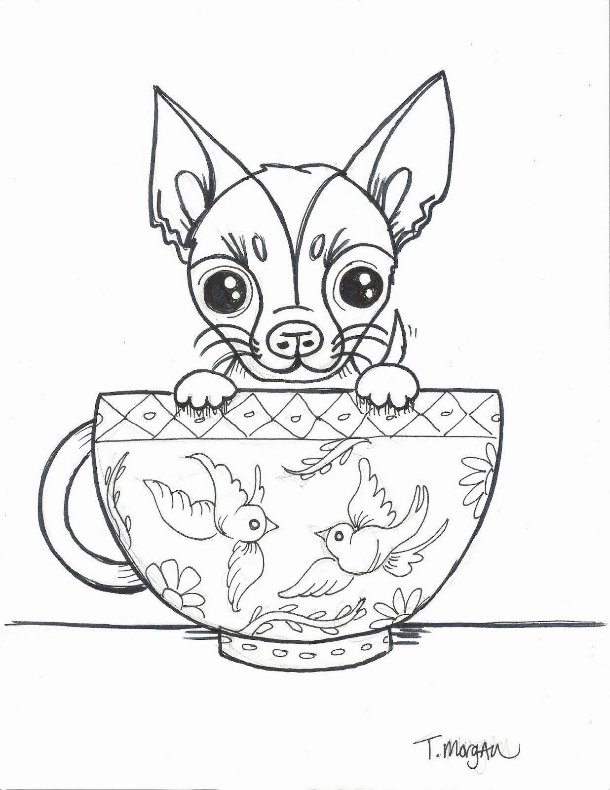 The Lost Sock Teacup Chihuahua