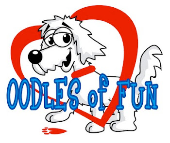 Visit Angel and Scruffy for Oodles of Fun!