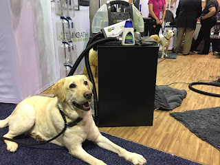 Bissell BARKBATH is portable and cleans your pet like a carpet cleaner.