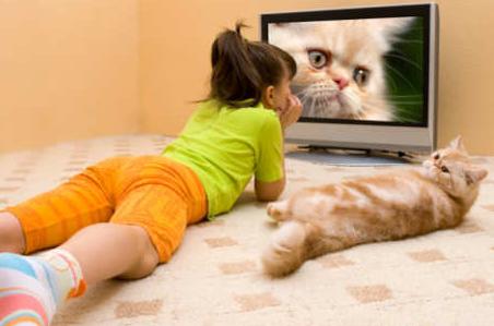 Waspada! Menonton Televisi Berlebihan Tingkatkan Risiko Kematian