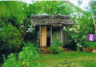 Petite habitation rupestre dans la végétation avec petit jardin