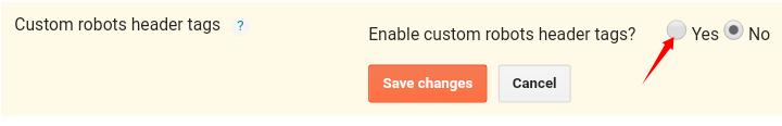 custom-robots-header-tags-settings