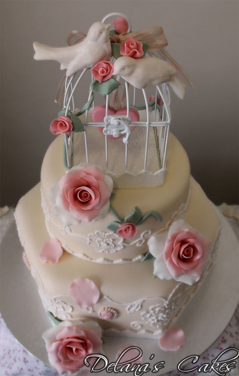 Delana S Cakes Birdcage Cake With Brushed Embroidery And