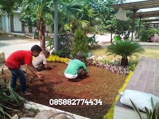 jasa pembuatan taman minimalis murah