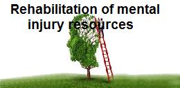 Rehabilitation of mental injury resources-traumatic brain injury
