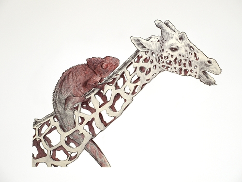 06-Giraffe-and-Chameleon-Jaume-Montserrat-Illustrations-of-Ribbon-Animals-in-Emptyland-www-designstack-co