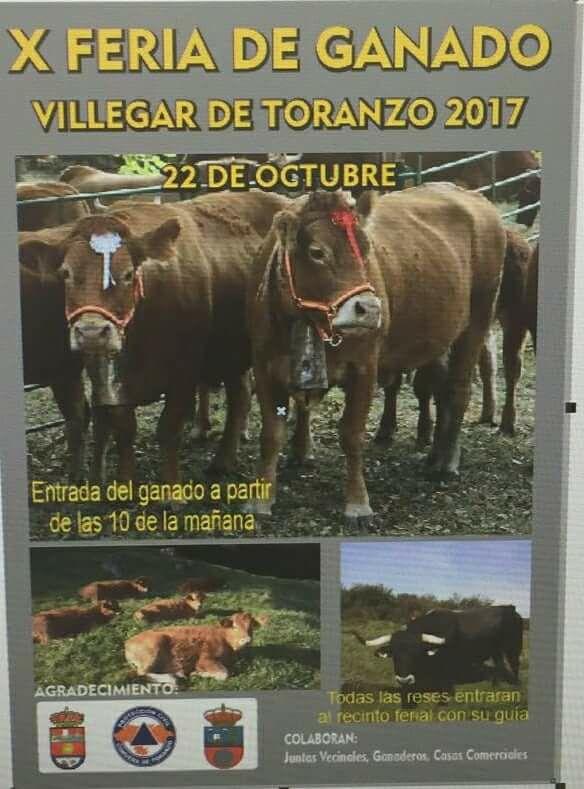X Feria de ganado en Villegar de Toranzo