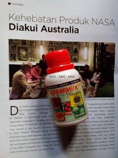AGEN NASA DI Padang Ulak Tanding Rejang Lebong - TELF 082334020868