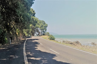 Driving On The Coromandel Peninsula In New Zealand: A Road-Trip for the Soul