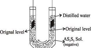 Electrical Properties of Colloidal Solution