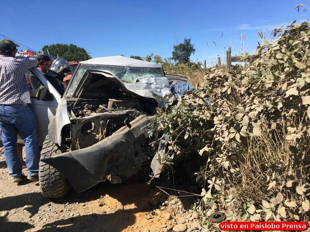 Fatal accidente: Colisión frontal entre camión y camioneta