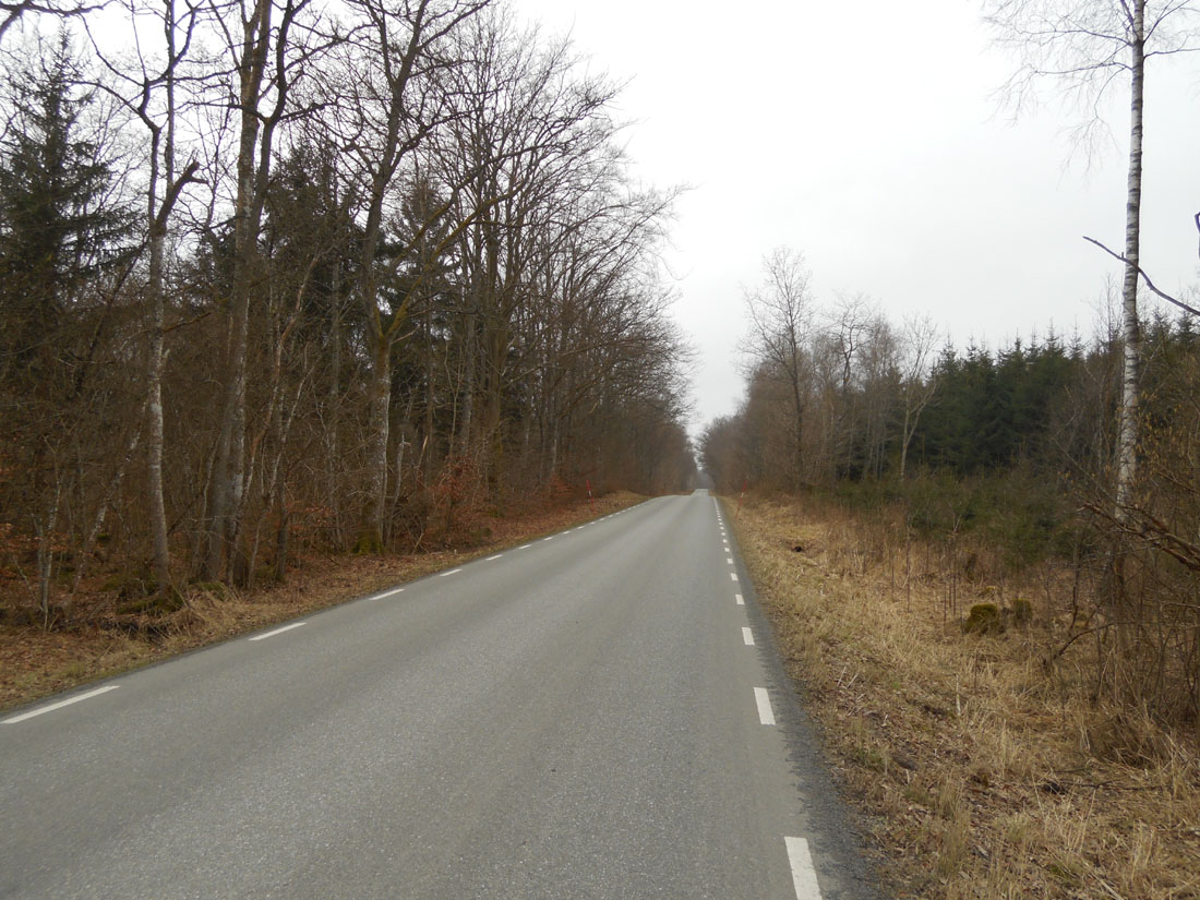 Giro in bici, 13 marzo 2016