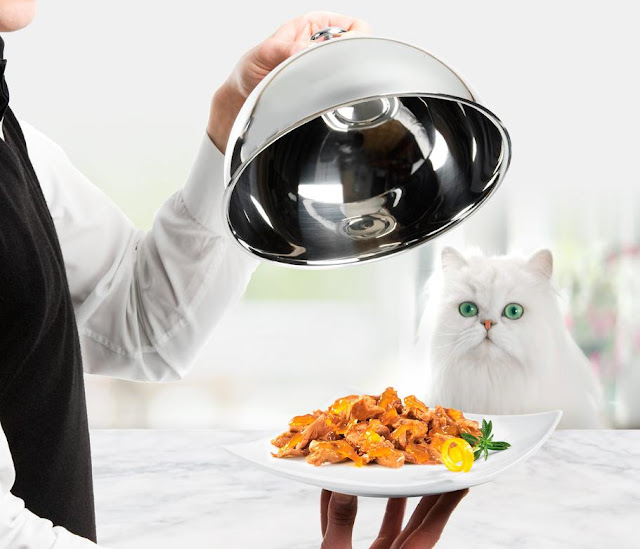 muestras gratis purina gourmet