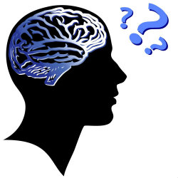 Curiosidade pode aumentar a memória