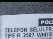 firmware polytron R2507 WHITE GOLD ZT (premium)