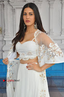 Telugu Actress Amyra Dastur Stills in White Skirt and Blouse at Anandi Indira Production LLP Production no 1 Opening  0093.JPG