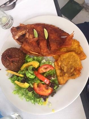 La cocina de cartagena viagens da mochilinha ga cha for Criar mojarras en casa