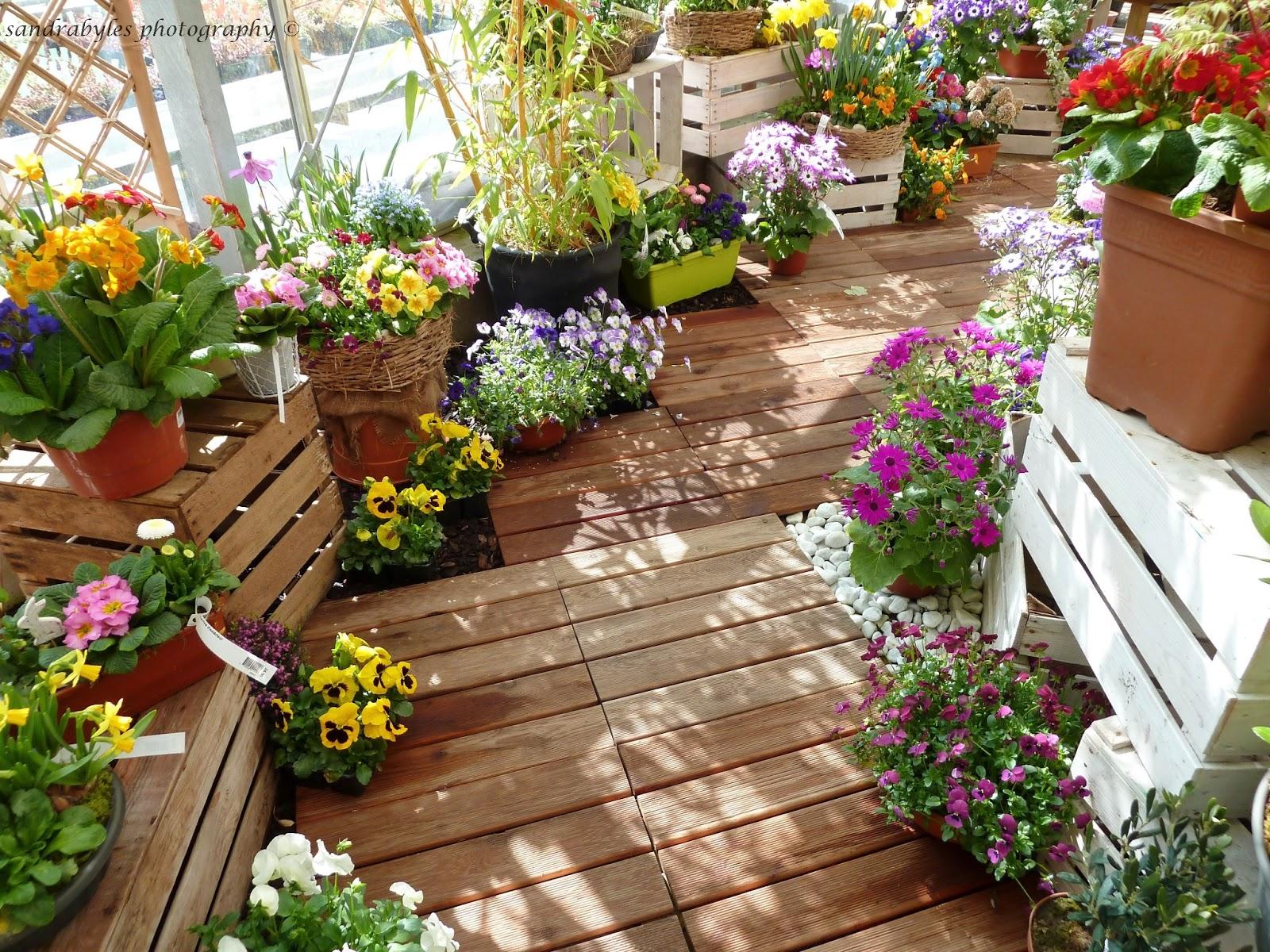 Come preparare il terrazzo per la primavera   Guida Giardino