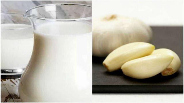 Bebida milagrosa de leche y ajo para tratar el asma, tuberculosis, neumonía, insomnio, problemas cardíacos y otras afecciones.