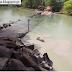 A batalha épica entre um crocodilo e um pescador num rio na Austrália