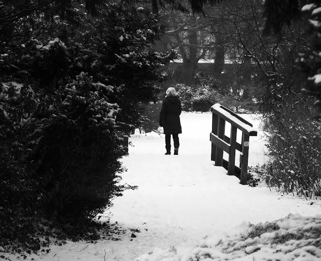 Snow Wander