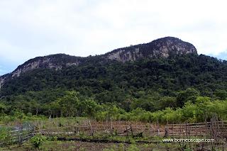 Rock Climbing, Hiking and Fishing spot in Danau Sentarum National Park