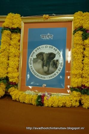 24 gurus of Dattatreya, positive energy, Avdhoot, Mahavishnu, Lord Shiva, Dattaguru, secure path, Shree Harigurugram, Avdhootchintan, elephant