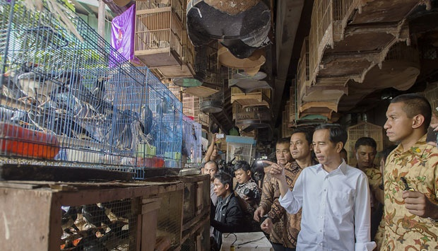 Beli Burung, LSM Scorpion Kritik Presiden Jokowi