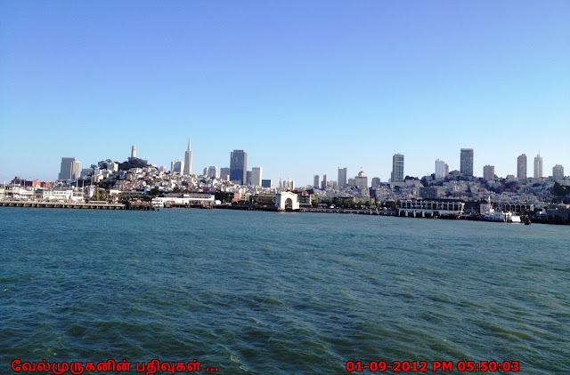 San Francisco Bay Area View