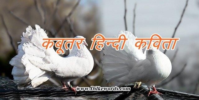 hindi poem on pigeon
