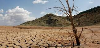 Causes and effects of desertification