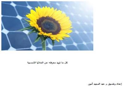 كل ما تريد معرفته عن الخلايا الشمسية pdf
